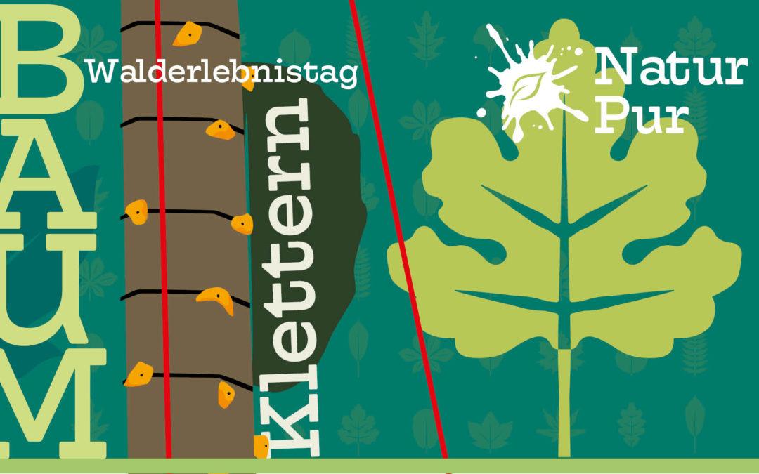 Walderlebnistag – mit Baumklettern