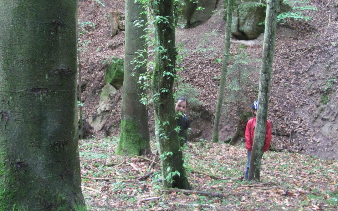 Walderlebnistag – NaturPur